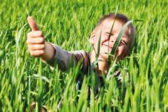 Junge im Maisfeld