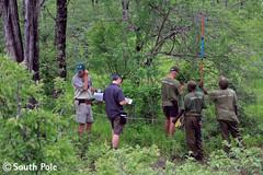 Waldschutzprojekt Kariba REDD+, Zimbabwe