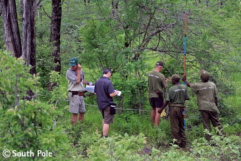 Waldschutzprojekt in Zimbabwe ©south pole group